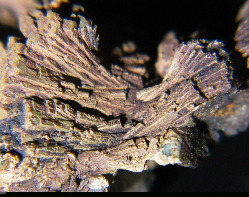 Gadolinite photo